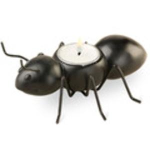 Picnic Tealight Holder: Ant