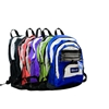 "Bazic 17"" Olympus Backpack"