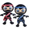 Inflatable Ninja