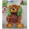 """11"""" Teddy Bear - With Bear Applique"""
