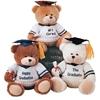 "10"" Sitting Bear With Happy Graduation"