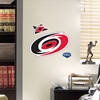 Carolina Hurricanes Teammates Logo