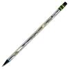 Dixon Ticonderoga Company Noir Penicls,W/Latex Free Eraser,2 Lead Grade,Black