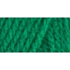 Red Heart Super Saver Jumbo Yarn-Paddy Green