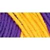Red Heart Team Spirit Yarn-Purple/Gold