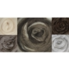 """Wool Roving 12"""" .25 Ounce 8/Pkg-Furry Friends Two"""