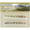 Multicolored Petunias - 16 Pack