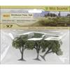 Deciduous Trees - 3 Pack