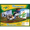 "Crayola Giant Fingerpaint Paper Pad 16""X12""-25 She"
